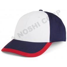 CAP-AN01217